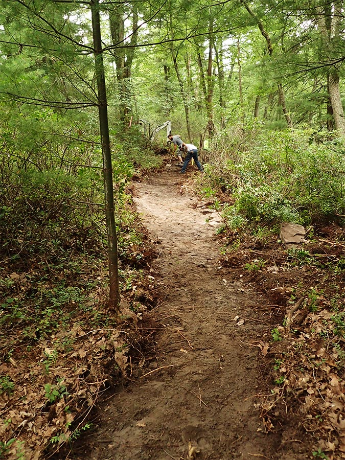 Trail maintenance work