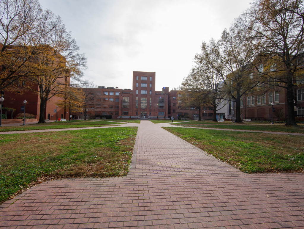 University Yard with tree-lined brick walkways