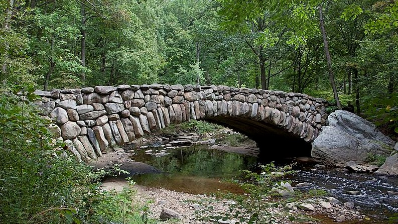 View of a bridge in the woods in Rock Creek Park